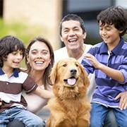 foster-adoption