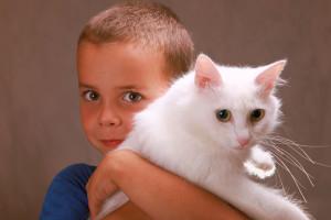 stockvault-boy-holding-a-cat122856